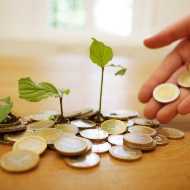 EU-Taxonomie: Schlüssel oder Hemmschuh für mehr Nachhaltigkeit?